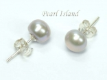 Classic Grey Pearl Stud Earrings 6-7mm