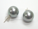 Bridal Pearls - Utopia Silver Grey Shell Pearl Studs