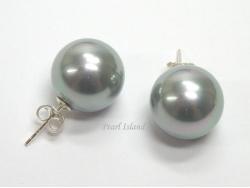 Bridal Pearls - Utopia Silver Grey Shell Pearl Studs