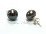 Prestige Peacock Black Pearl Studs 7-8mm
